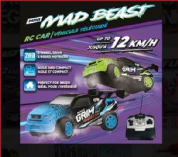 RC MINI MAD BEAST CAR